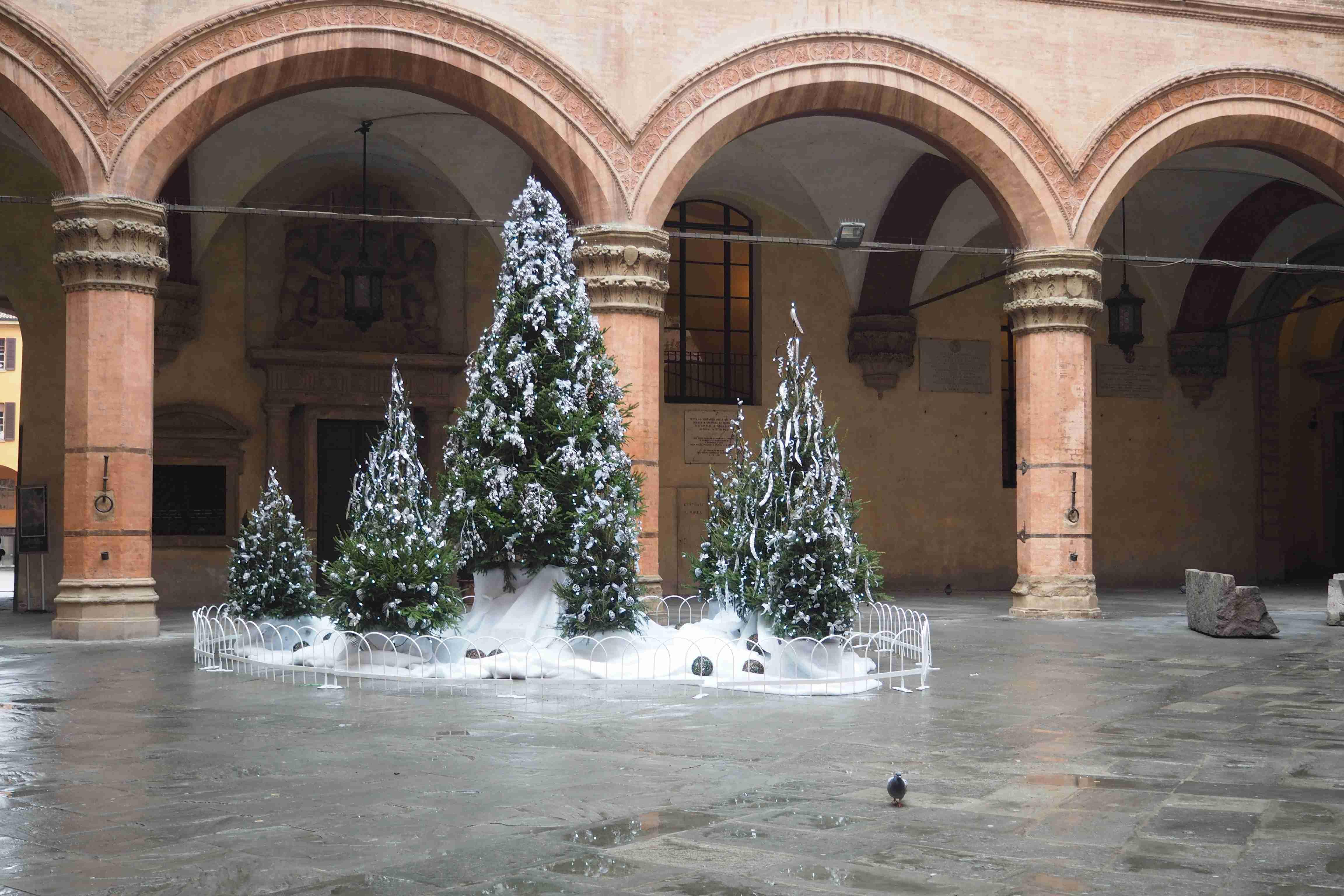 Natale: le iniziative per le festività a Bologna